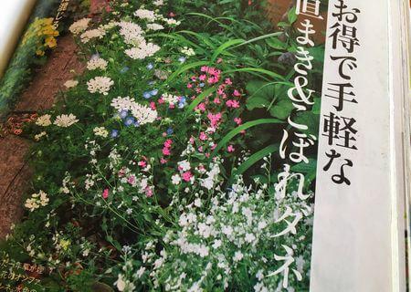 キヨミさん ガーデニング本