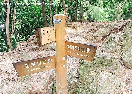 高尾山 3号路分岐